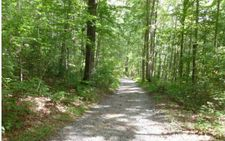 360 Willow Creek Dr, Blue Ridge, GA 30513