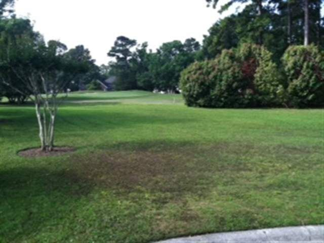Golf View Ct Lot 10 Pawleys Island, SC 29585