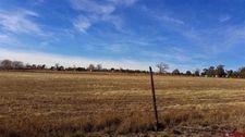 1338 County Road 988, Arboles, CO 81121