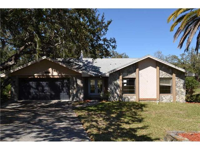 Homes For Sale Dunedin Fl With Pool