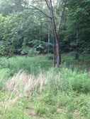 Lot 0 Brownsville Rd, Morgantown, KY 42261