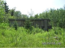 1881 Gray Wilmurt Rd, Ohio, NY 13324