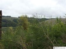 21131 Bridge Creek Rd Se, Silverton, OR 97381