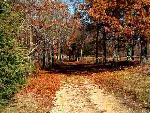 county road 1193 midway ar 72651 home for sale and