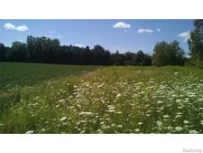 6680 General Squier Rd, Almont Township, MI 48003