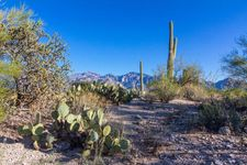 14014 N Honey Bee Trl, Oro Valley, AZ 85755