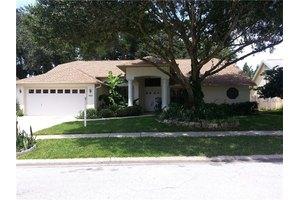 1669 Powder Ridge Dr, Palm Harbor, FL 34683
