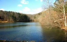 131 Mountain Creek Way, Ellijay, GA 30540