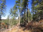 Lot 8 Woodlands Way, Cloudcroft, NM 88317