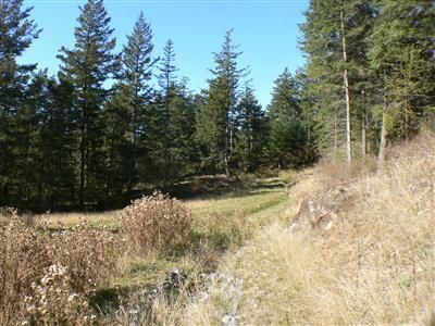 136 veneda trail dr orcas island wa 98245 land for for Homes for sale orcas island wa