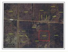 Lot 1 Crampton Rd, Warrens, WI 54666