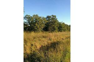 0001 Hodges Rd, Poolville, TX 76487