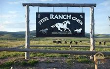 Steel Creek Rd, Wisdom, MT 59725