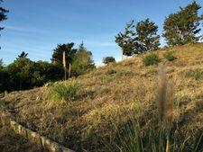 Laurent, Santa Cruz, CA 95060