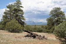 Shroyer Dr, Chama, NM 87520