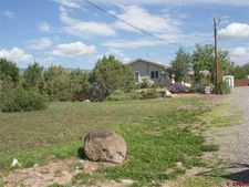 Nw Birch, Cedaredge, CO 81414