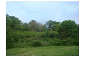 64ac- Gorgeous Pastures & Creek! Surrounded by Horse/ Cattle Farms