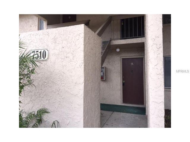 home for rent 7510 needle leaf pl unit 53 tampa fl 33617