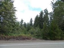Quiet Mountain Rd, Camas Valley, OR 97416