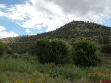 Highway 141, Naturita, CO 81422