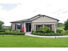 30111 Cheval St, Mount Dora, FL 32757