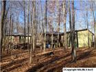 206 Pickens Dr, Skyline, AL 35768