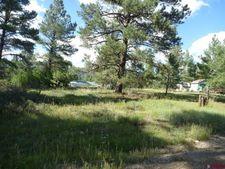 786 Nutria Cir, Pagosa Springs, CO 81147