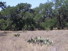 274 Puzzle Pass, Spring Branch, TX 78070