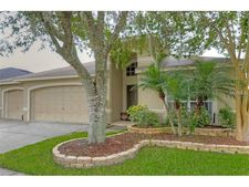 19142 Golden Cacoon Pl, Lutz, FL 33558