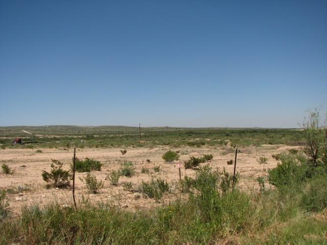 Hidalgo County Property Records Search