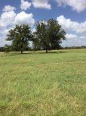 00 County Road 104, Giddings, TX 78942