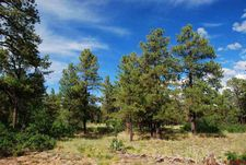 538 Oakbrush St, Pagosa Springs, CO 81147
