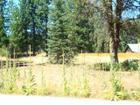 Lot 41 Panther Meadow Drive, Mccloud, CA 96057