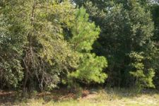 6 Acres Highway 178, Reidsville, GA 30453