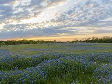 15909 Lake Ray Hubbard Dr, Forney, TX 75126