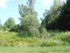 Lakefield Rd, Merrill, MI 48637