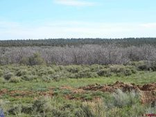 8500 County Line, Egnar, CO 81325