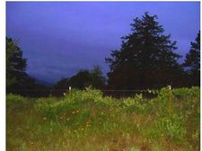 94 Hartford Rural Rd, Hartford, AR 72938