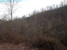 Laurel Creek Rd, Louisa, KY 41230