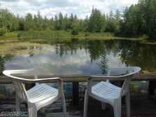 9655 Partridge Ave, Lake, MI 48632