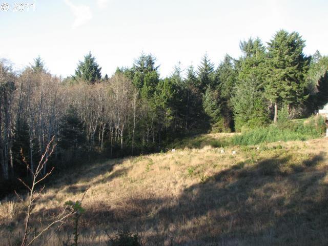 Cape Ferrelo Rd, Brookings, OR 97415