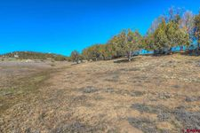 Pine, Arboles, CO 81121