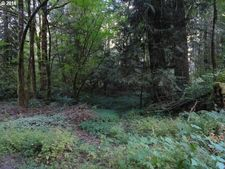 E Hillview Dr, Rhododendron, OR 97049
