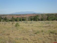 16323 Road Z, Yellow Jacket, CO 81335