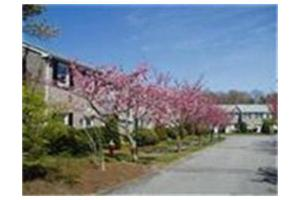 71 Captain Cook Ln, Barnstable, MA 02632