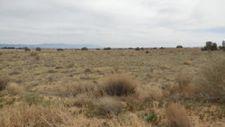 Ternero St Nw, Albuquerque, NM 87120