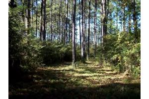Na Springhill Rd, Smithdale, MS 39664
