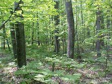11250 Rambling Way, Canadian Lakes, MI 49346