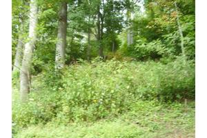 832 Big Horse Creek Rd, Newland, NC 28657