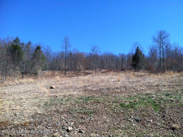 150 Root Hollow Ln, Monroe Township, PA 18657 - realtor.com®